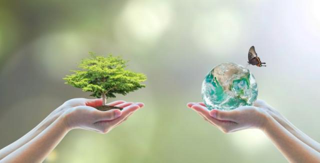Bydlet ekologicky a šetrně k přírodě není nic složitého. Stačí si ... cb7420c6a4